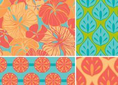 Carlotta Collection by Laura Lobdell of Printed Hues