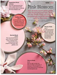 Painting your walls in pink? we have the best pink paint color schemes to choose from with paints from Benjamin Moore, Sherwin Williams and more! Pink Paint Colors, Wall Colors, House Colors, Pink Color, Pink Grey, Pastel Pink, Grey Colors, Blush Pink, Bedroom Color Schemes