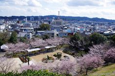 Beautiful view from Kakegawa Castle's tower.