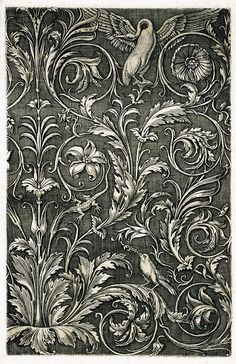 Agostino dei Musi, called Veneziano.  Panel of Ornament with Acanthus and a Swan, cica 1530-1535. Engraving, 33.4 cm x  22 cm   Blanton Museum of Art