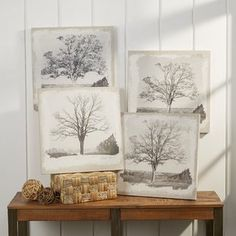 Changing Seasons Tree Plaques