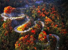 Autumn Switchbacks, Chattanooga, Tennessee