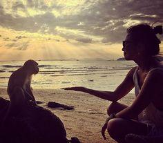 Por do sol com muitos macacos!  #thailandluxe #thailandinsider #thailandtextbook #aboutthailand #tailandia #thailand #krabi #aonang #asia #blogmochilando