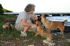Ellen with a mom and pups on Los Machos beach... they all came to New Jersey.