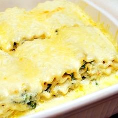 A mixture of cream cheese, spinach, & cheeses are filled into lasagna noodles, rolled and baked under a blanket of alfredo sauce.