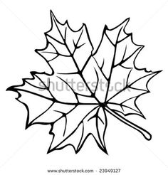 Leaf Coloring Pages Maple Leaves Clipart Panda Free