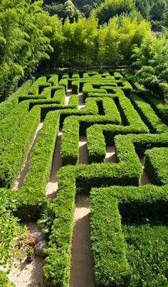 Bamboo labyrinth! - Bambouseraie de Prafrance, Générargues, Anduze, Alès, Gard, Languedoc-Roussillon, France