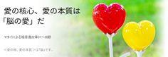 鄭明析牧師による主日の御言葉からⓒ愛の核心、愛の本質は「脳の愛」だ - Mannam & Daehwa(キリスト教福音宣教会)