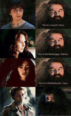 I Ain't Got Time for This Sparkly Sh*t.-hagrid on harry potter (memes) Harry Potter Jokes, Harry Potter Fandom, Hogwarts, Book Fandoms, Book Series, Hunger Games, Fangirl, Marvel, Movies