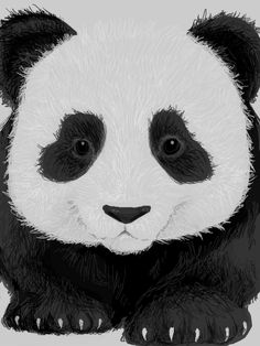 Panda by nayruasukei #panda #nayruasukei