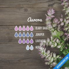 Blend Recipe: 4 drops Clary Sage, 3 drops Ylang Ylang, 2 drops Cypress - I can't believe Dave didn't like Justin Timberlake. Essential Oil Diffuser Blends, Essential Oil Uses, Young Living Essential Oils, Aroma Diffuser, Diffuser Recipes, Aromatherapy Oils, Doterra Essential Oils, Osho, Recipe 4
