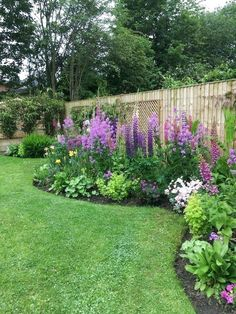 Every beautiful cottage garden has common principles that make them a success. Learn about the fundamentals you need to create your very own cottage garden. Back Gardens, Outdoor Gardens, Indoor Garden, Courtyard Gardens, Longwood Gardens, Amazing Gardens, Beautiful Gardens, Flower Garden Design, Garden Yard Ideas
