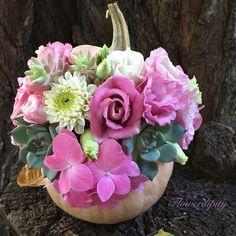 Hallowdipity Pumpkin  #flowerdipity #autumn #halloween #flowers #pumpkin #decoration #dhalia Halloween Flowers, Fruit Arrangements, Pumpkin, Autumn, Decoration, Plants, Decor, Pumpkins, Fall Season