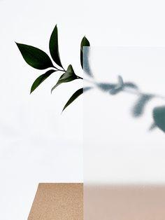 Concrete Nature, Camille Boyer