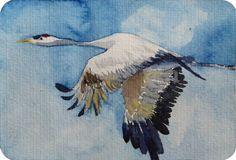 Unsere verkauften Aquarelle 2013 | Kranich im Flug (c) Miniatur in Aquarell von Frank Koebsch #Aquarell #watercolor #Kranich #crane