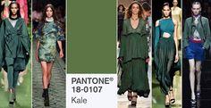 Kolory na wiosnę 2017: PANTONE 18-0107 Kale