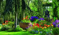 Trabajos en el jardín para el mes de Abril en www.tuinen.es