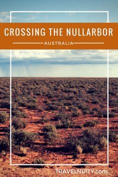 This 1200km stretch of highway through the Australian desert is either one of the most boring journeys you can take or a must-do Australian trip!