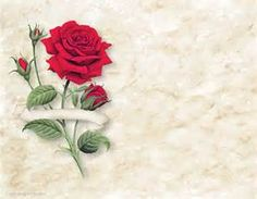 red rose white label paper