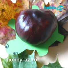 Crafts For Kids, Arts And Crafts, Conkers, Autumn, Fall, Turtle, Craft Ideas, Nature, Crafts For Children