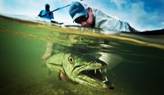 Fly Fishing Photography | Fly Fishing | Gink and Gasoline | How to Fly Fish | Trout Fishing | Fly Tying | Fly Fishing Blog