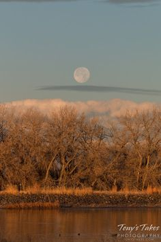 The moon sets at sunrise at the Rocky Mountain Arsenal National Wildlife Refuge near Denver, Colorado on December 8, 2014.