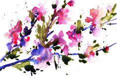 Cherry Blossoms (by Jennifer Lawson)