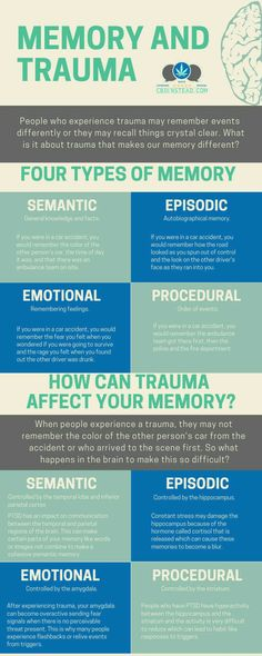 Does Trauma Change Your Memories? Did you know that the stress that you experience during a trauma can cause you to have memory issues? Did you know that the stress that you experience during a trauma can cause you to have memory issues? Trauma Therapy, Therapy Tools, Types Of Memory, Mental Training, Psychology Facts, Memory Psychology, Health Psychology, Educational Psychology, Behavioral Psychology