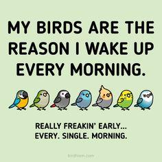 All the damn mornings :v