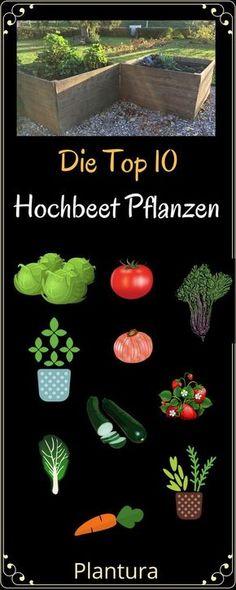Welche Pflanzen eignen sich am besten für ein Hochbeet? Und welche Vorteile hat man durch ein solches Hochbeet im eigenen Garten? Das erfahrt Ihr bei Plantura!
