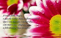 A terça-feira chegou e que ela venha cheia de flores e cores... Que o seu dia seja o melhor dia.... muita paz, alegria e que a felicidade se faça  presente!