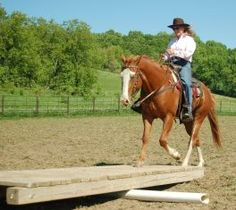 22Horse Obstacle Course Ideas