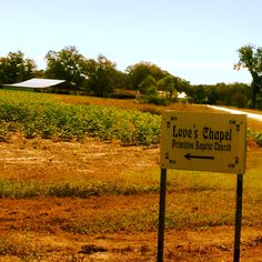 Love's Chapel Road...a beautiful drive in rural southeast Georgia.