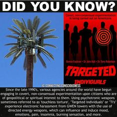 For all targeted individuals who are attacked relentlessly with