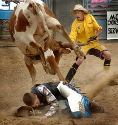 A rodeo clown/bull fighter steps into help a cowboy. Though they often wear funny make-up and clown costumes, the bull fighters are the real heroes of the rodeo. When a cowboy is thrown, they run in front of the bull to distract it and will thrown their bodies over a fallen cowboy to take the hit.