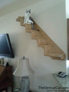 6-Step Cat Stair from The Vertical Cat by TheVerticalCat on Etsy https://www.etsy.com/listing/189581966/6-step-cat-stair-from-the-vertical-cat