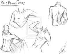 Male body study by SoraCooper on deviantART