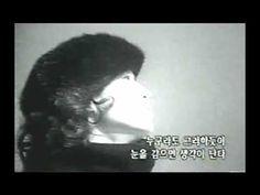 배인숙 - 누구라도 그러하듯이 (1983)