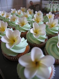 Frangipani flower cupcakes. Could be really cute for a wedding!
