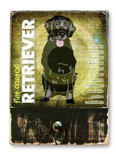 #FlatCoatedRetriever  #ruckusdog #ruckusdogproducts