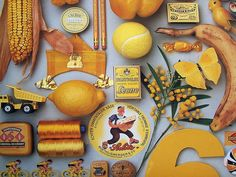 yellows: pages from the very calendar that inspired me...very happily found on salbug00's flickr
