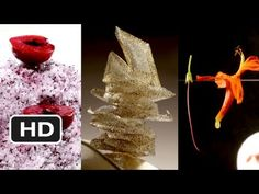 El Bulli: Cooking in Progress - The worlds Best restaurant - waiting for this documentary - in the meantime, enjoy the trailer