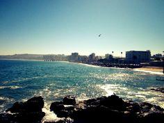 Viña del Mar. Chile.