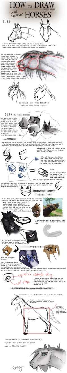 Horse tutorial by kungpowkitten on DeviantArt