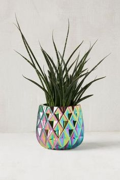 Shop Geo Oil Slick Planter at Urban Outfitters today. We carry all the latest styles, colors and brands for you to choose from right here.