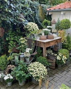 Container Gardening, Gardening Tips, Shabby Chic Garden, Farmhouse Garden, Bloom Where You Are Planted, Garden Planning, Garden Paths, Sweet Home, Pergola