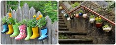Simple Landscaping, Plants & Flowers to Customize your Homes Exterior