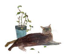 입양과 파양 사이 상처받는 고양이들 http://www.sisainlive.com/news/articleView.html?idxno=8022
