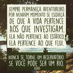 "@instabynina's photo: ""Bons sonhos!!! #vida #osho #frases #citações #aventura #freespirit #instabynina"""
