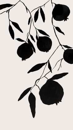 Pomegranate silhouette, acrylic ink on bond paper, 2018 by tristan b. Art And Illustration, Arte Floral, Art Graphique, Botanical Art, Botanical Drawings, Art Design, Bond Paper, Art Inspo, Fiber Art